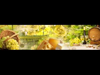 Стеновая панель с фотопечатью Натюрморт с вином