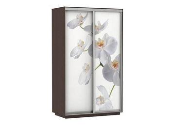 Шкаф-купе 2-х дверный Фото Хит Орхидея